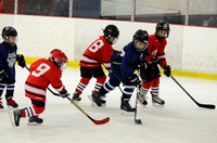 S 16 CRUNCH MINOR  v COOLER SELECTS